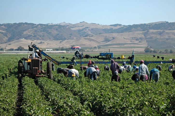 Agricultural Employees in California Entitled to Overtime