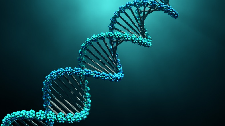What Is Genetic Information Discrimination?