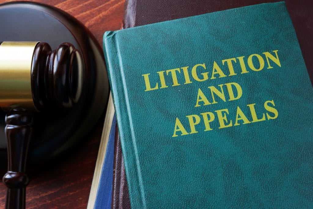 You Do Have Options if You Do Not Like a Court Decision: Learn About the Appeals Process